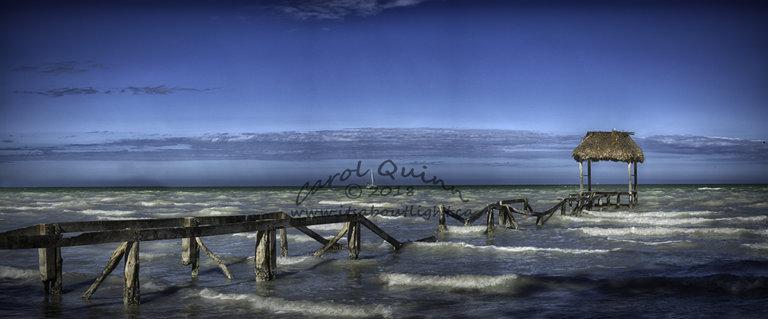 Seaside Sarteneja, by Carol Quinn. ID 2CQ2164-66 rev 1d