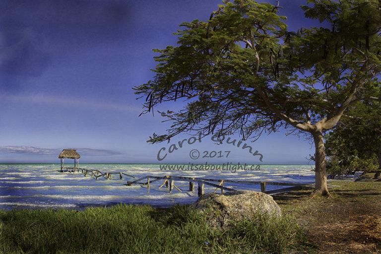Sarteneja Old Wharf, by Carol Quinn. ID 2cq2255-57 rev 1e