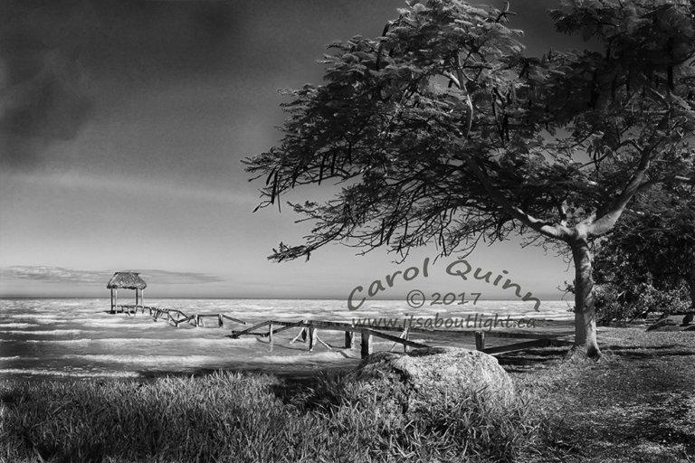 Sarteneja Old Wharf, by Carol Quinn. ID 2cq2255-57 rev 2e