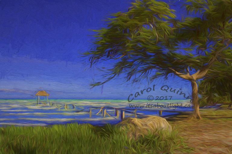 Sarteneja Old Wharf, by Carol Quinn. ID 2cq2255-57 rev 3e